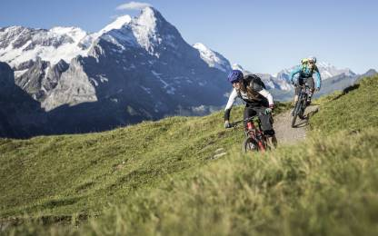Trail Riding Grindelwald